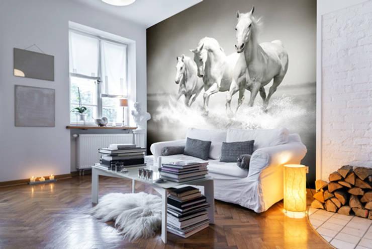 Horses Black & White Murs & Sols ruraux par Wallsauce.com Rural