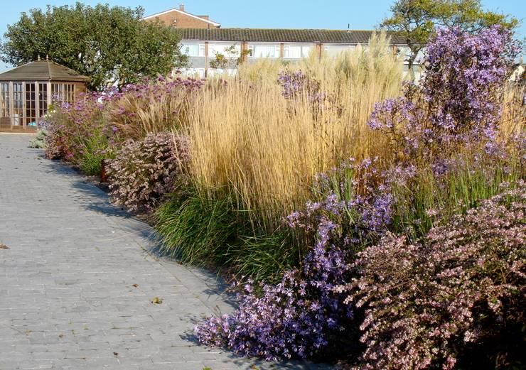 Coastal garden planting:  Garden by Roger Webster Garden Design