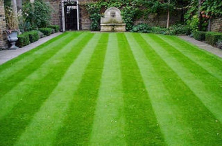 Ünal Peyzaj Ltd.Şti. – Çim Tohumları Üretimi:  tarz Bahçe