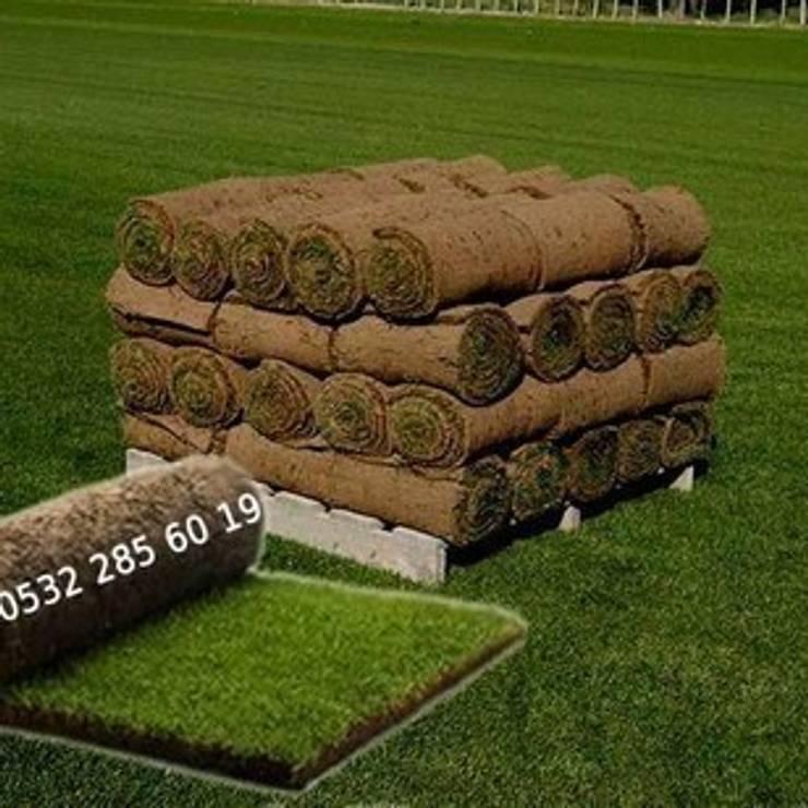 Ünal Peyzaj Ltd.Şti. – Hazır Rulo Çim Üretimi:  tarz Bahçe
