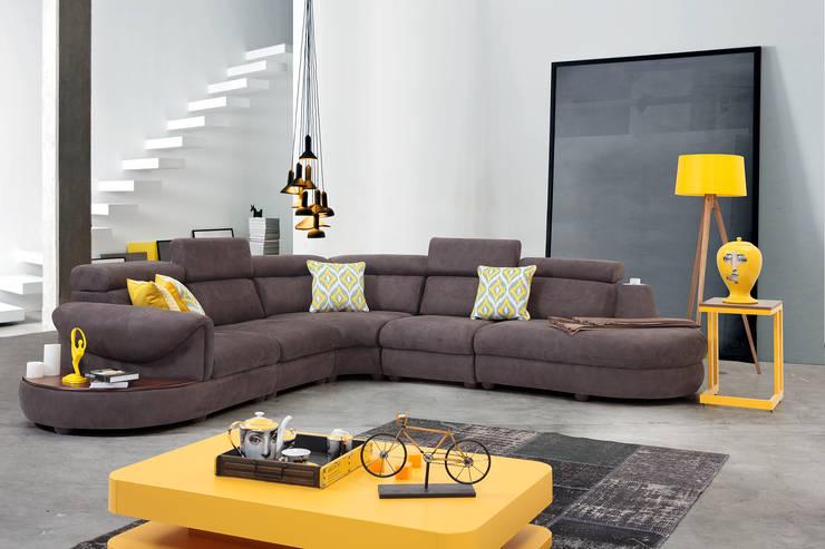 غرفة المعيشة تنفيذ Trabcelona Design