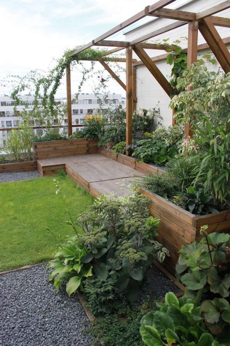 Jardines de estilo  de GREENERIA, Moderno