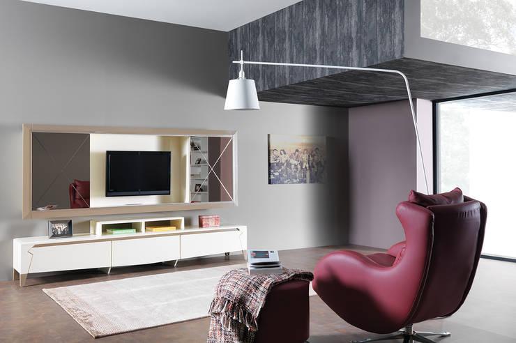 Trabcelona Design – iber tv ünitesi:  tarz Oturma Odası