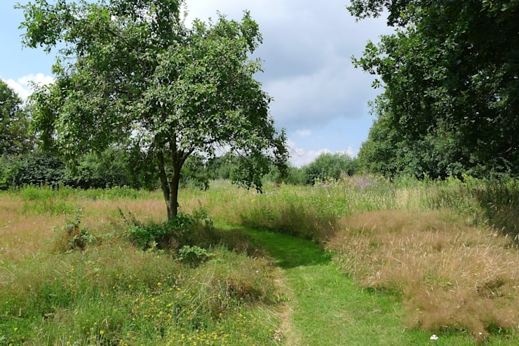 Boerderij tuinen & landelijke tuinen Landelijke tuinen van Meeuwis de Vries Tuinen Landelijk