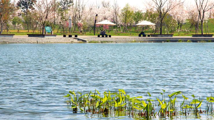 Promenade am Großen See © Valentien + Valentien:  Veranstaltungsorte von Valentien + Valentien Landschaftsarchitekten Stadtplaner