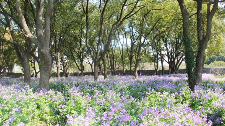 Medizinpflanzen Garten © Valentien + Valentien:  Veranstaltungsorte von Valentien + Valentien Landschaftsarchitekten Stadtplaner