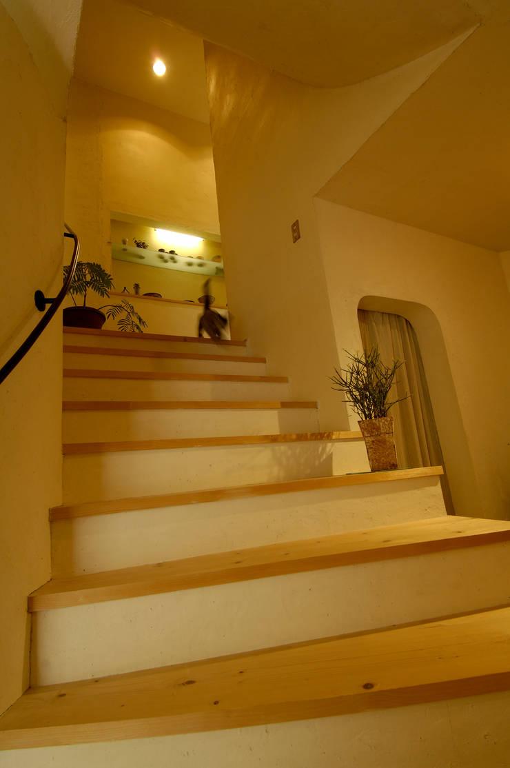 土佐漆喰の家: 大森建築設計室が手掛けた廊下 & 玄関です。