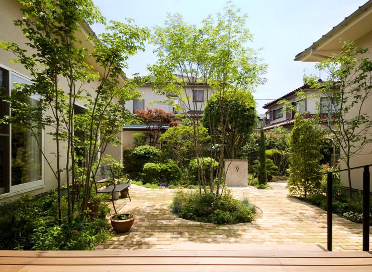 中庭の植物とベンチ: FURUKAWA DESIGN OFFICEが手掛けた庭です。,モダン