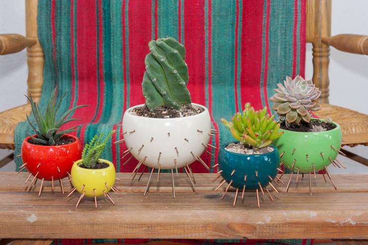 MACETA - MODELO CACTUS: Jardines de estilo  por CURADORAS