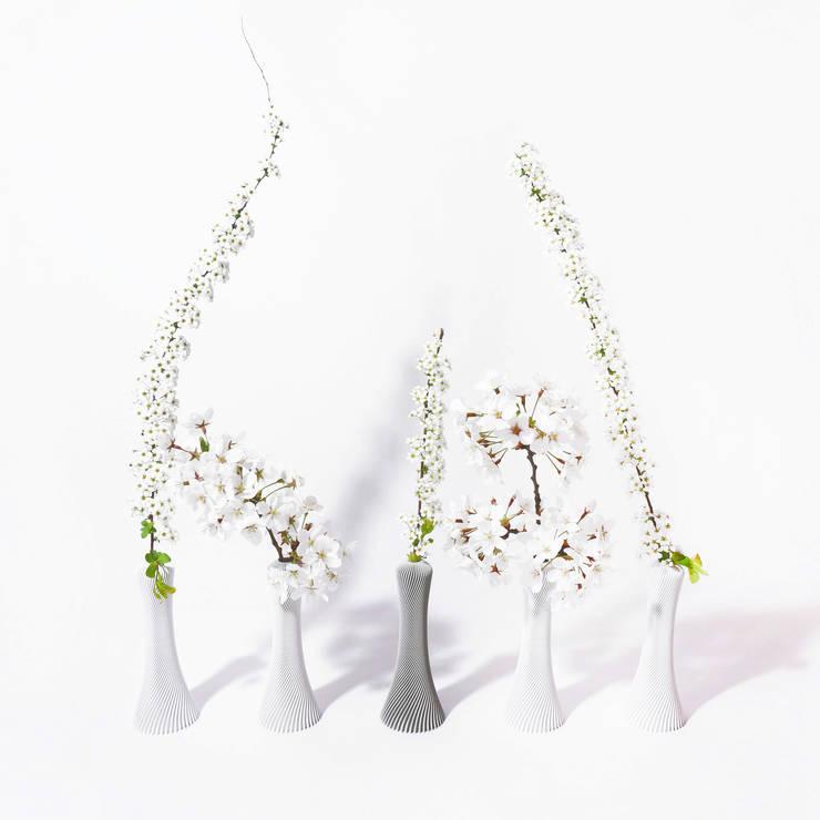 Kindof Flower Vase: Kindof의  정원