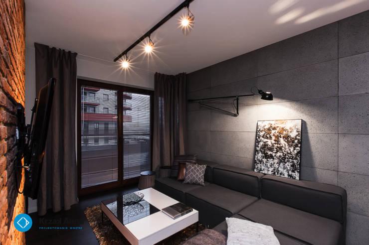 mieszkanie kawalera: styl , w kategorii Salon zaprojektowany przez Anna Krzak architektura wnętrz,