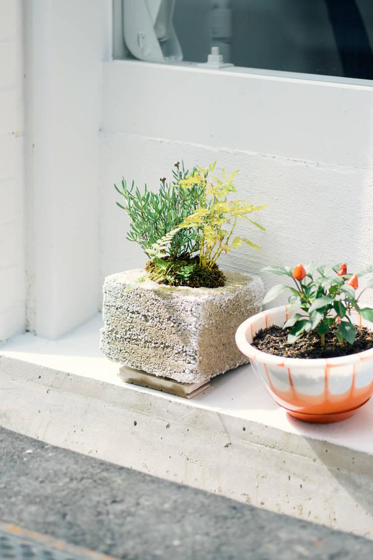 植栽ポット: coil松村一輝建設計事務所が手掛けたインテリアランドスケープです。,
