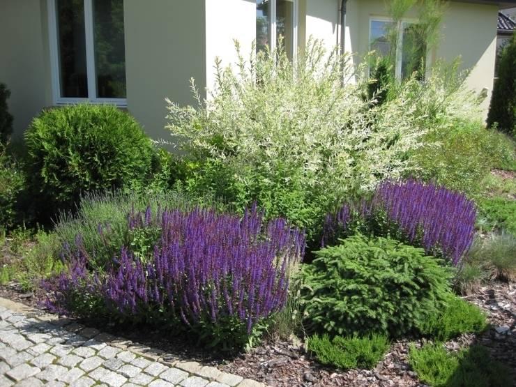Duży ogród przydomowy: styl , w kategorii  zaprojektowany przez Sungarden - Projektowanie i urządzanie ogrodów