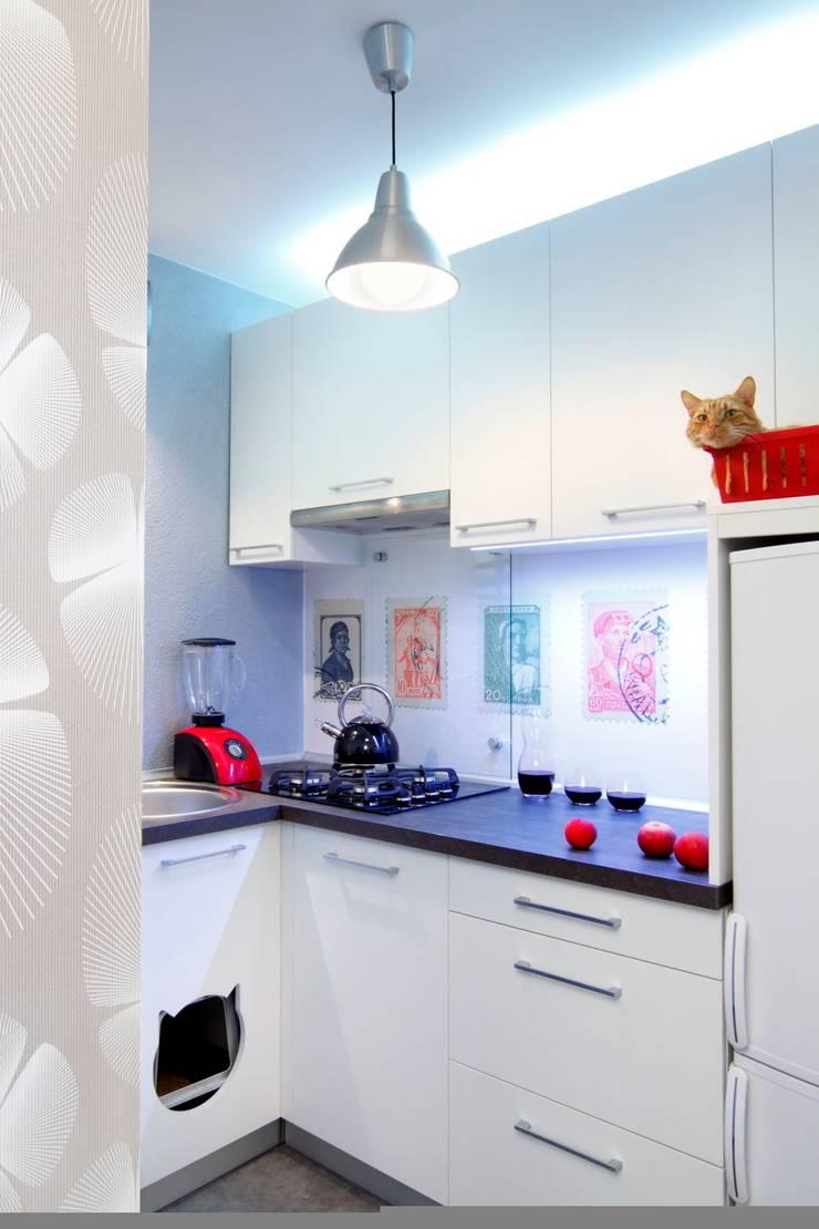 Regał w centrum uwagi – projekt kawalerki: styl , w kategorii Kuchnia zaprojektowany przez Studio Projektowe RoRO interior + design,