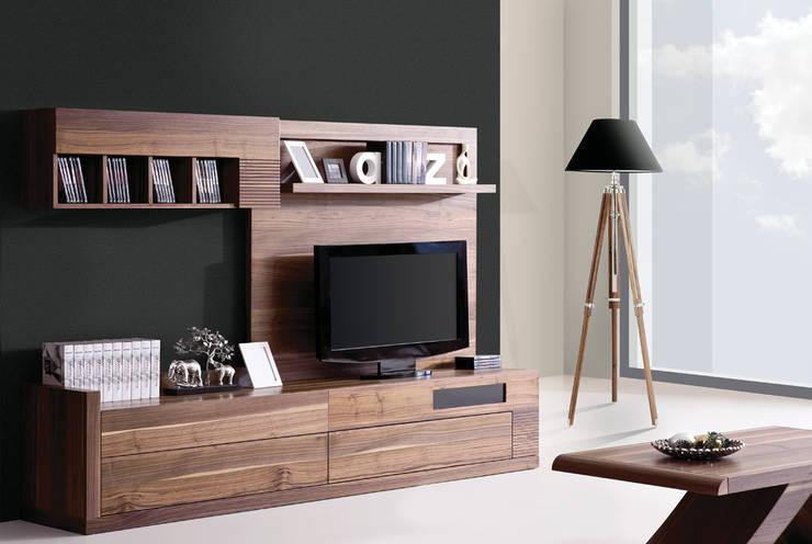 Trabcelona Design – polo tv ünitesi:  tarz İç Dekorasyon