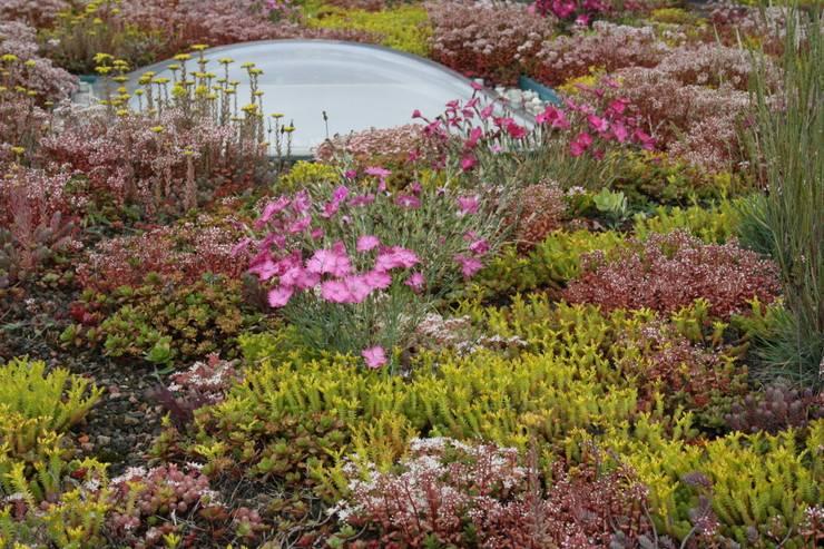 Keizersgracht:  Tuin door De Dakdokters, Landelijk
