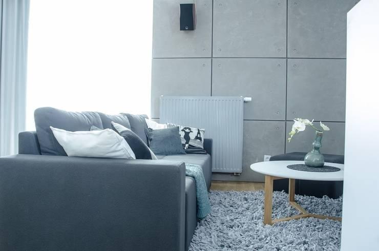 MIESZKANIE W SZAROSCIACH: styl , w kategorii Salon zaprojektowany przez I Home Studio Barbara Godawska