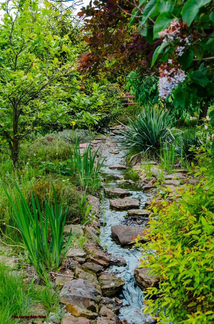 Strumyk: styl , w kategorii Ogród zaprojektowany przez Centrum ogrodnicze Ogrody ResGal