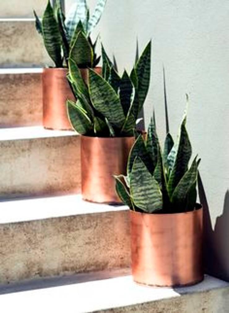 GB: Jardín de estilo  por GALERIA BOUTIQUE
