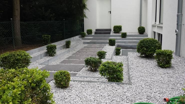 modern Garden by SUD[D]EN Gärten und Landschaften