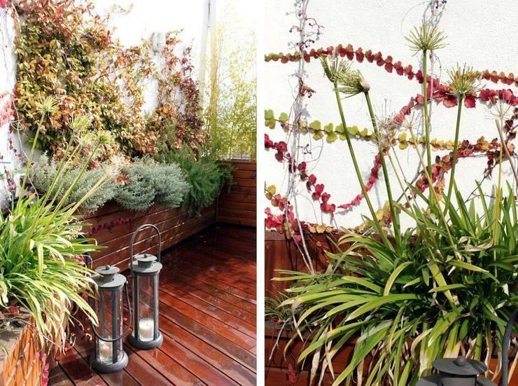 Terraza pequeña en Madrid - Diseño y reforma de terraza: Balcones y terrazas de estilo  de La Habitación Verde