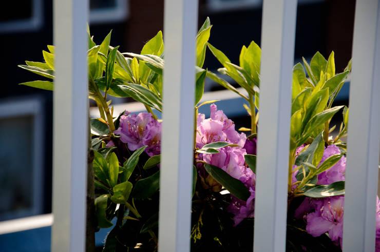 Groenvoorziening:  Tuin door Renoparts Vianen B.V. | Uw Dakterras Specialist