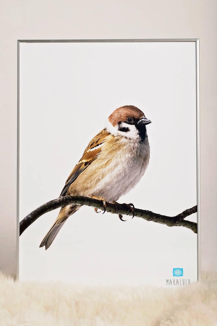 Plakat Ptak: styl , w kategorii Ściany i podłogi zaprojektowany przez Makalulu