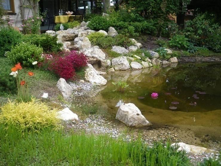 Teich:  Garten von Neues Gartendesign by Wentzel