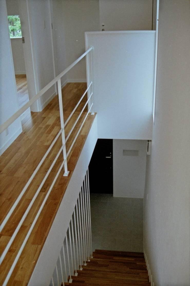 借景を取り込んだ家: 三浦尚人建築設計工房が手掛けた廊下 & 玄関です。