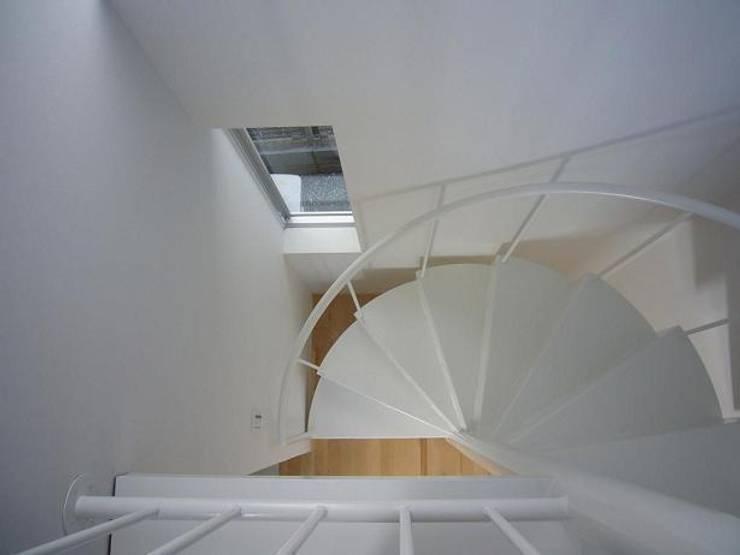 狭小地に建つ木造三階建て住宅: 三浦尚人建築設計工房が手掛けた廊下 & 玄関です。,