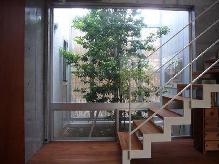 中庭と坪庭のあるガレージハウス: 三浦尚人建築設計工房が手掛けた庭です。,