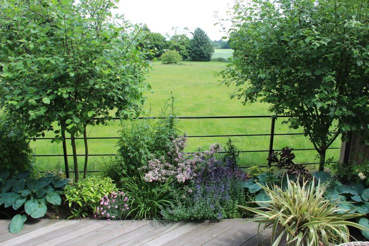View across fields:   by Dawn Garden Design