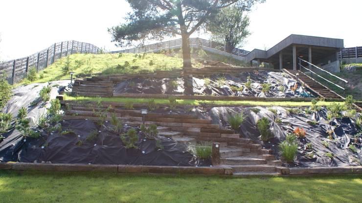 Gród na skarpie: styl , w kategorii  zaprojektowany przez archiDENA architektura krajobrazu