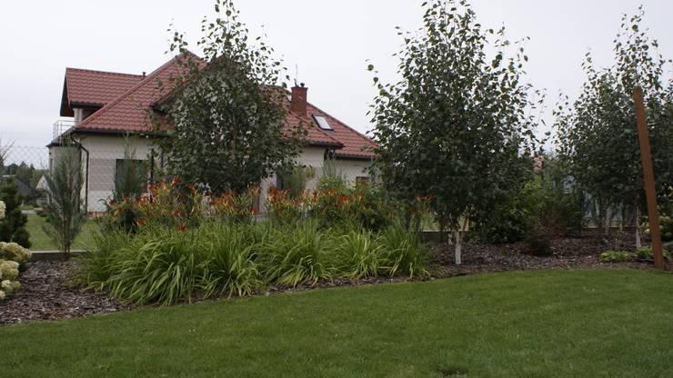 Ogród krajobrazowy w Starych Kupiskach : styl , w kategorii  zaprojektowany przez archiDENA architektura krajobrazu