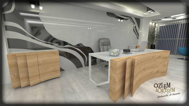 özlem tokerim iç mimarlık ve tasarım – ofis tasarımı: modern tarz , Modern