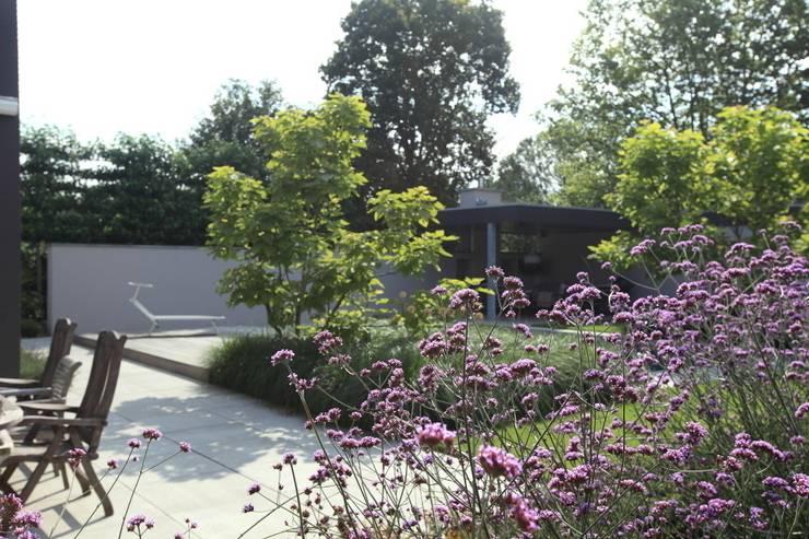 Projekty,  Ogród zaprojektowane przez Stoop Tuinen