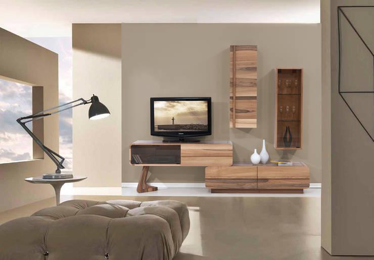 Trabcelona Design – PAZIL TV ÜNİTESİ:  tarz Oturma Odası