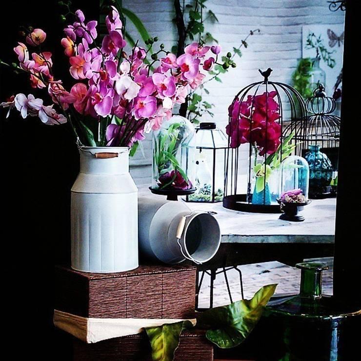 Jardín: Jardín de estilo  de Mandarina Home