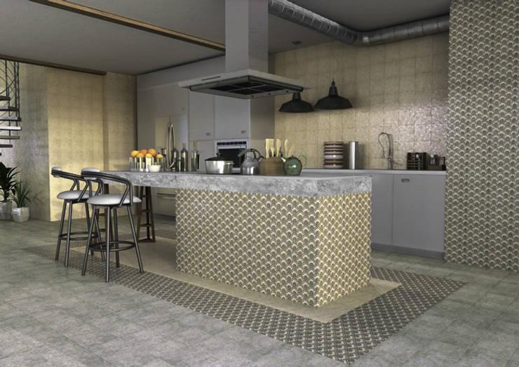 industrial Kitchen by INTERAZULEJO