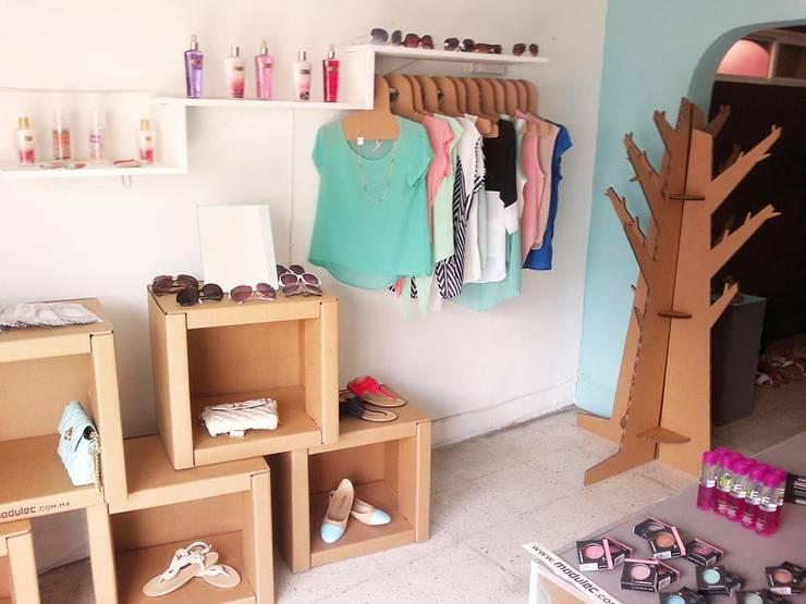 Escaparate : Oficinas y tiendas de estilo  por Modulec