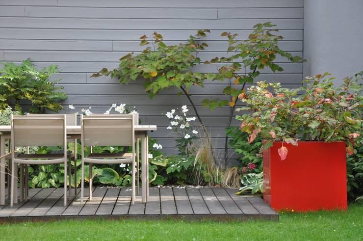 modern Garden by  GARDEN TROTTER