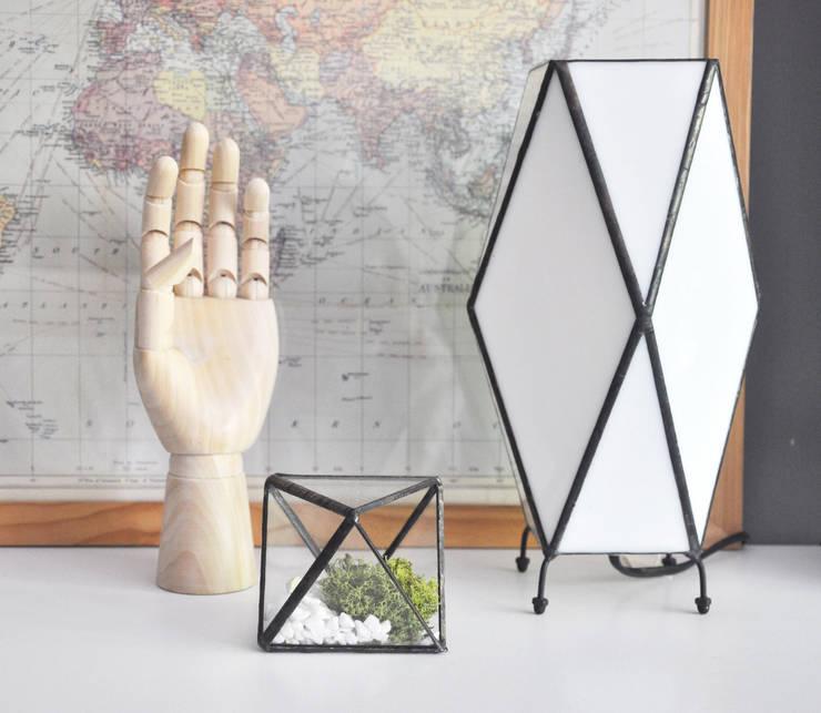 Terrario Octaedro pequeño: Hogar de estilo  de ZetaGlass