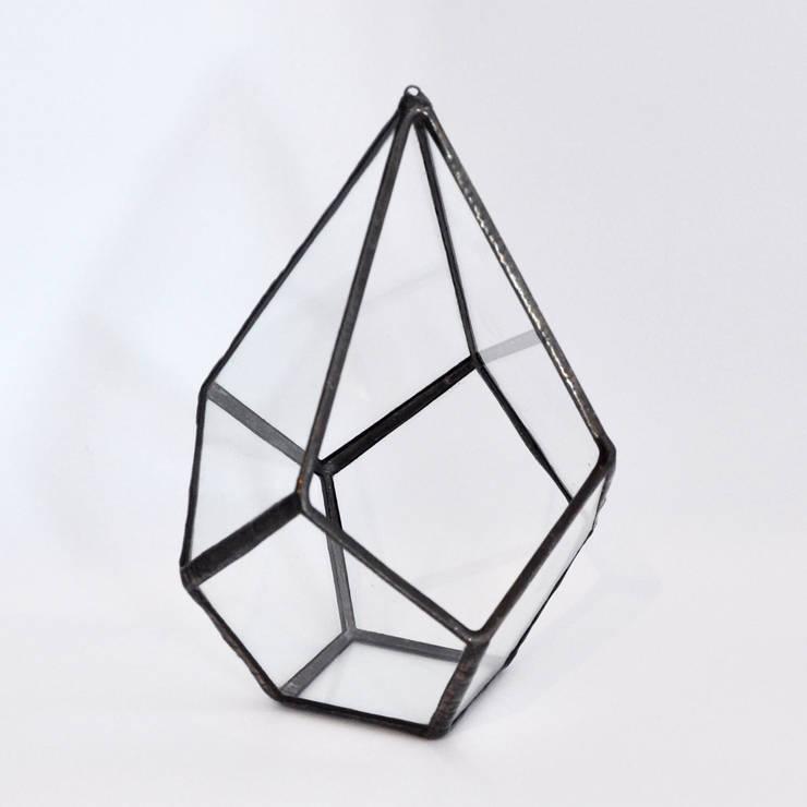 Terrario Drop: Hogar de estilo  de ZetaGlass