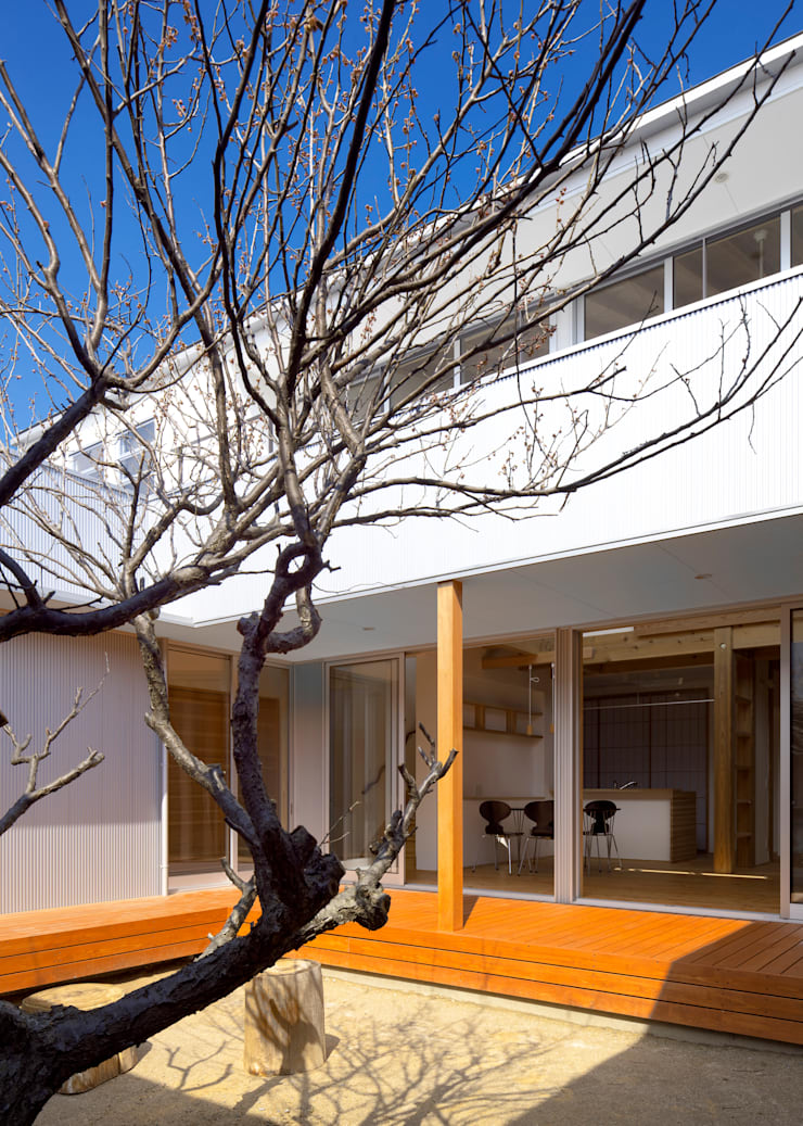 中庭の梅の木: 有島忠男設計工房が手掛けた庭です。