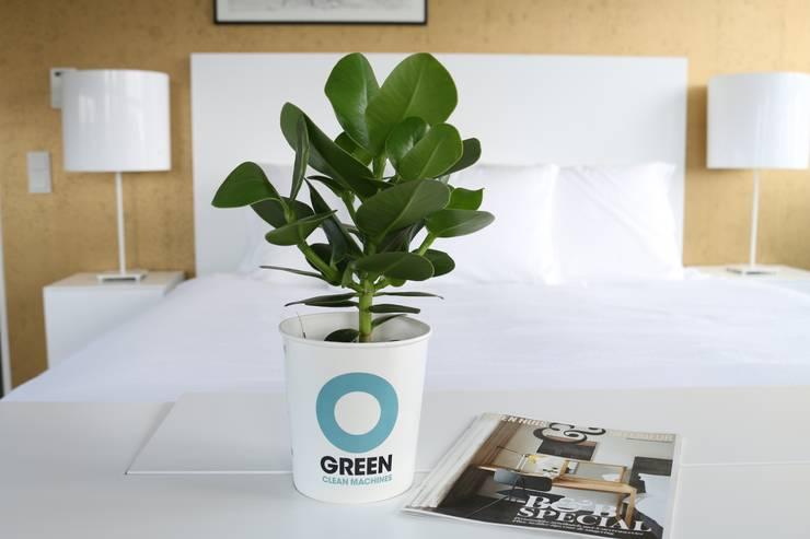 Ogreen: modern tarz Oturma Odası