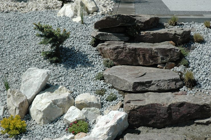 ogród skalny: styl , w kategorii  zaprojektowany przez greenin