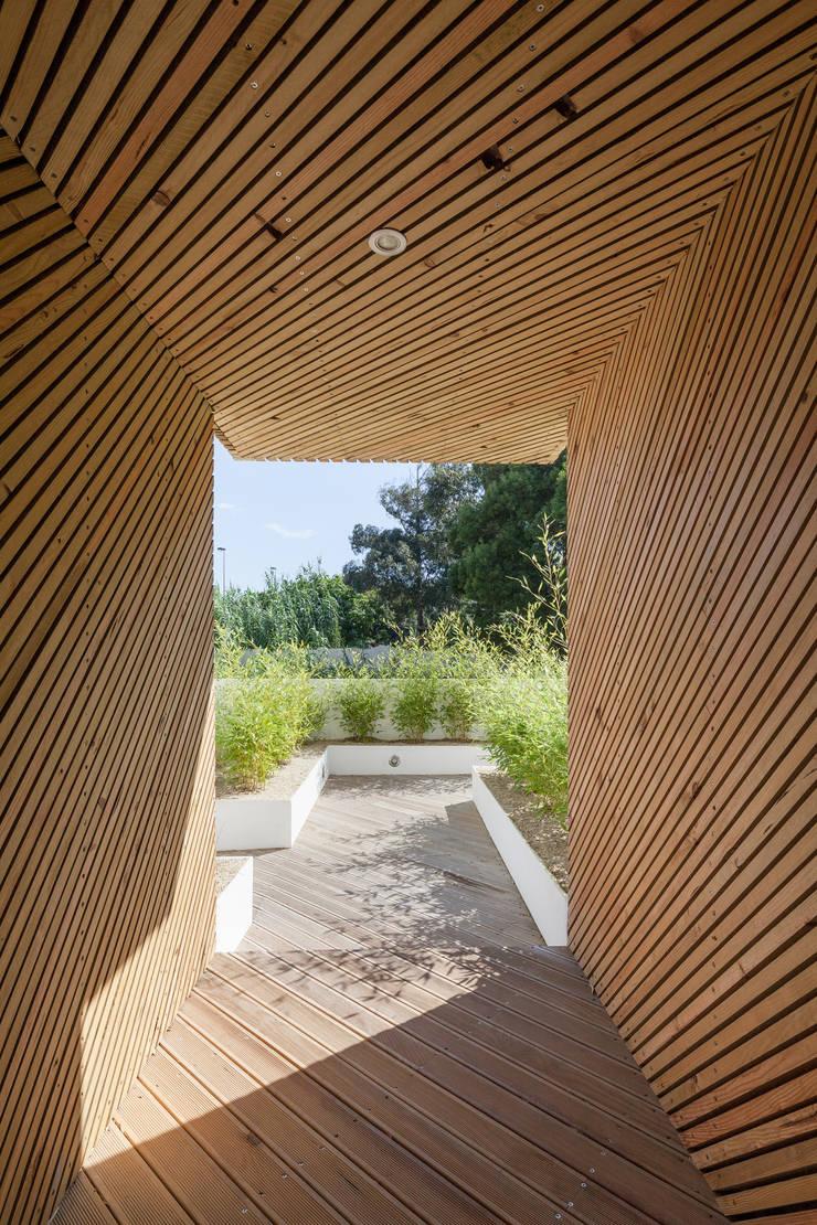 Garden by Joao Morgado - Architectural Photography