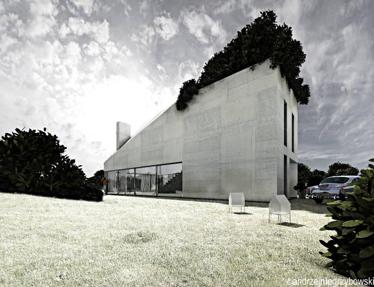 (Wy)ciągnięty dom: styl , w kategorii Domy zaprojektowany przez RTP Consulting Sp. z o.o.