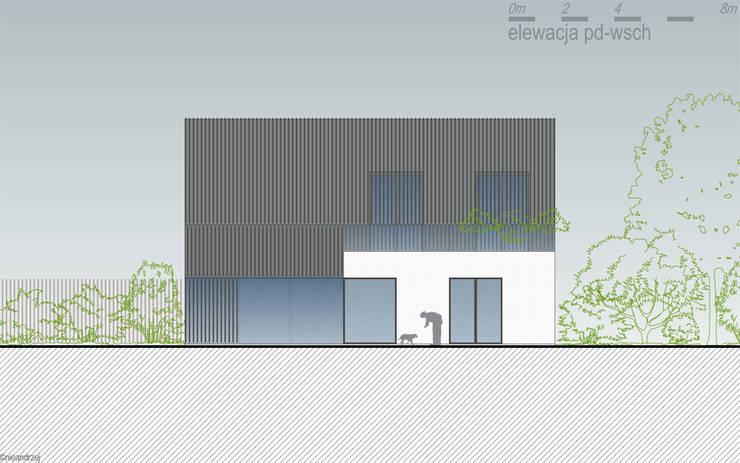 dom podcieniowy na granicy Żuław i Kaszub: styl , w kategorii  zaprojektowany przez RTP Consulting Sp. z o.o.