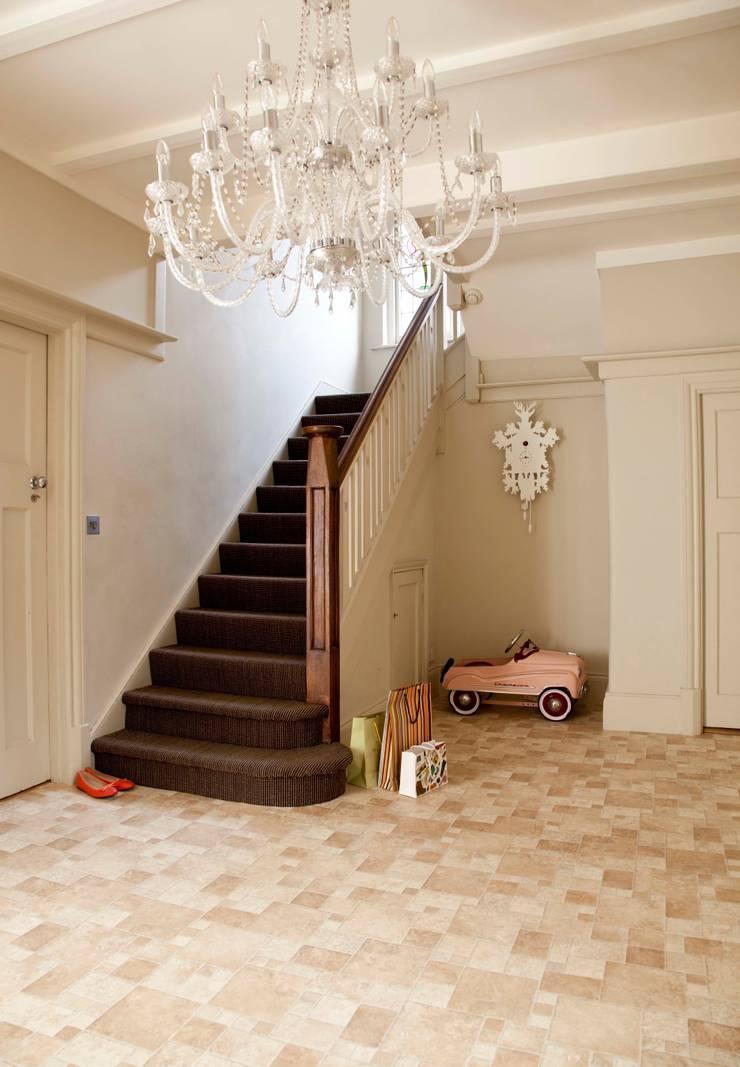 Toucan:  Walls & flooring by Leoline